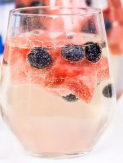 recipes for a fruit wine spritzer. drinkmate non electric sparkling water maker