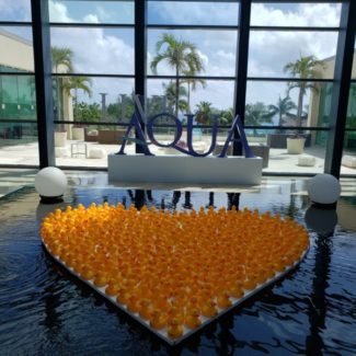 live aqua lobby with ducks in the pool ohoto by alison blackman